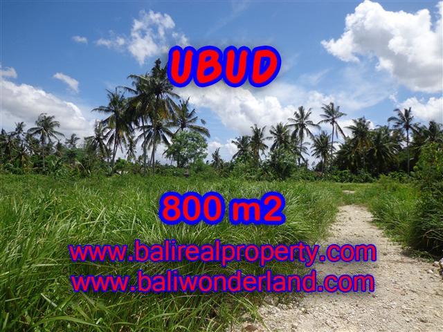 Jual tanah di Ubud
