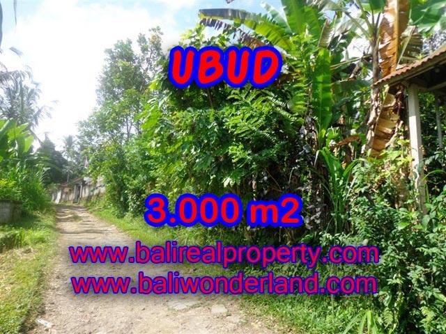 Tanah dijual di Ubud view tebing 3.000 m2 di Ubud Payangan