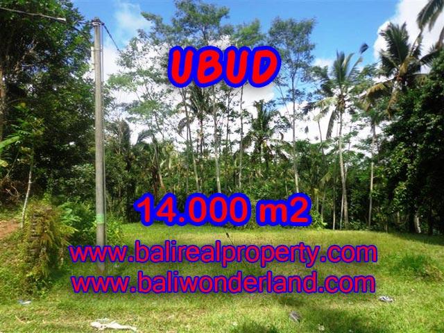 Tanah di Ubud dijual 140 Are di Ubud Payangan