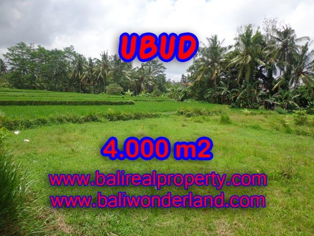 Tanah di Ubud dijual view sawah dan sungai 40 Are di Dekat sentral Ubud