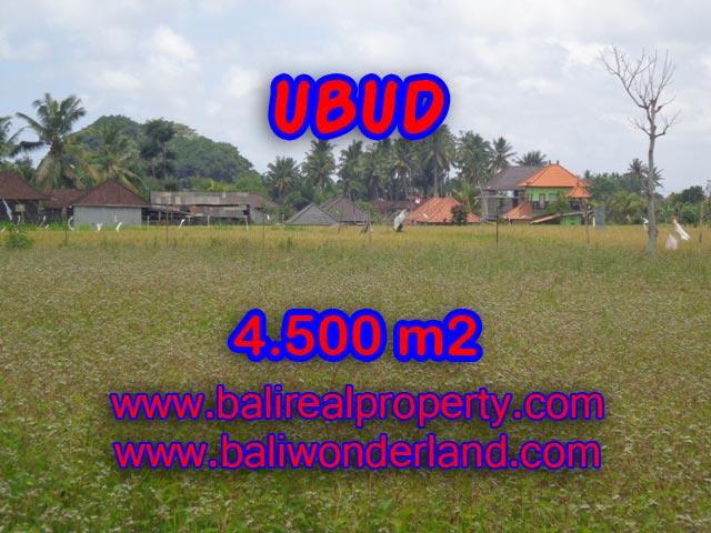 Tanah di Ubud dijual TJUB320 view sawah terasering di Dekat sentral Ubud