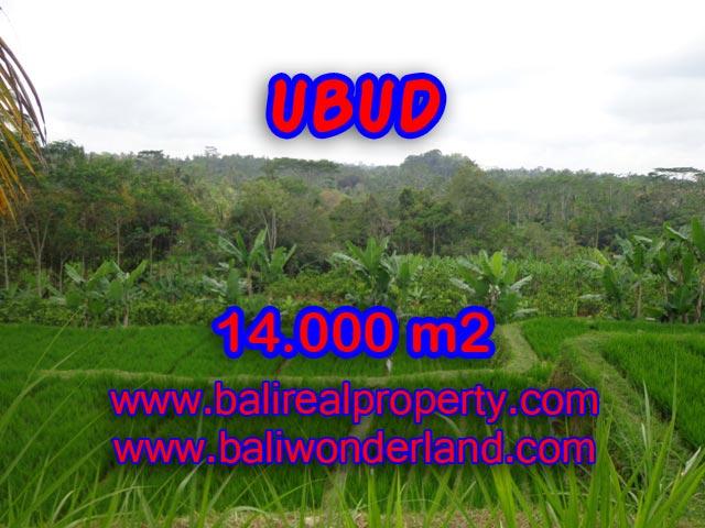 Tanah dijual di Bali 140 Are di Ubud Payangan