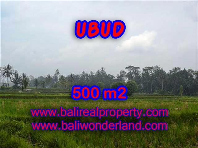 JUAL TANAH DI UBUD BALI TJUB363