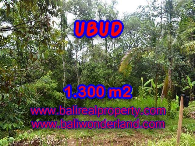 Tanah di Ubud Bali Dijual murah TJUB362 - investasi property di Bali