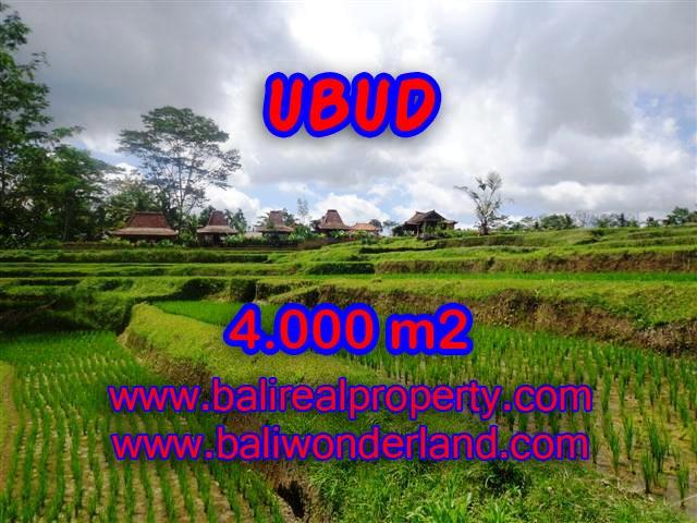 Tanah dijual di Ubud 4.000 m2 view sawah dan sungai di Dekat sentral Ubud