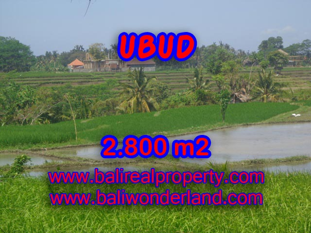 Jual tanah di Bali 2.800 m2 view gunung dan sawah di Dekat sentral Ubud