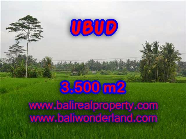 DIJUAL TANAH DI UBUD BALI MURAH TJUB361 - INVESTASI PROPERTY DI BALI