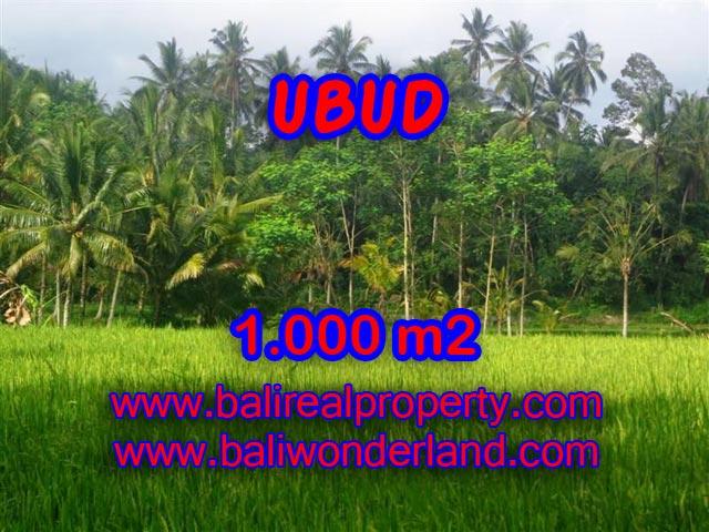 Jual tanah di Ubud Bali 1.000 m2 view sawah di Ubud Payangan
