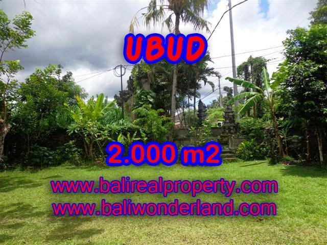 TANAH DIJUAL DI BALI, MURAH DI UBUD HANYA RP 4.350.000 / M2