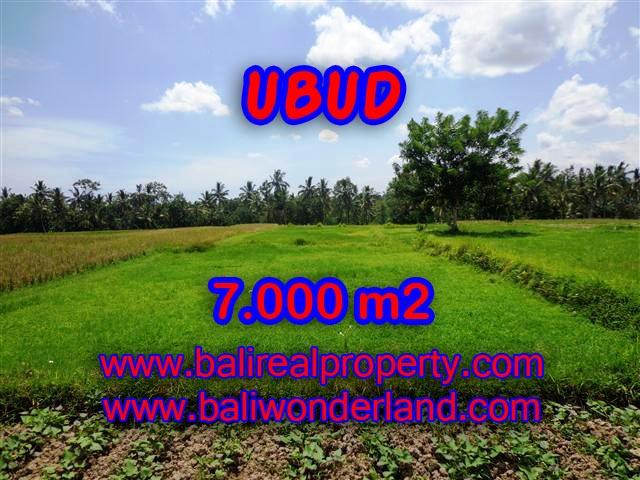 Murah ! Tanah di UBUD Bali Dijual TJUB381 - investasi property di Bali