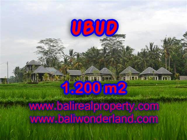 Tanah di UBUD Bali Dijual murah TJUB365 - investasi property di Bali