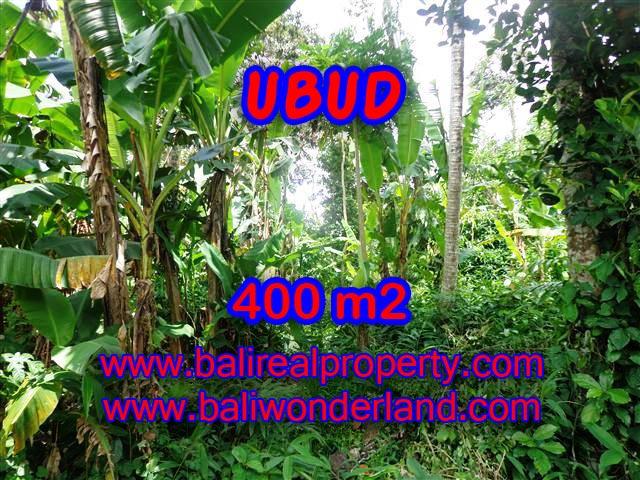 TANAH DI UBUD MURAH DIJUAL TJUB371 - INVESTASI PROPERTY DI BALI