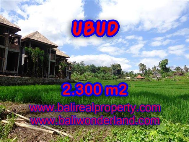 Tanah dijual di Ubud Bali view sawah dan sungai