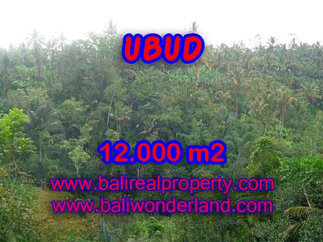 Tanah dijual di Ubud murah di Ubud Payangan Bali