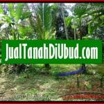 1 Jual Tanah Murah di Ubud Bali