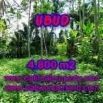 DIJUAL TANAH MURAH DI UBUD - LAND FOR SALE IN UBUD BALI