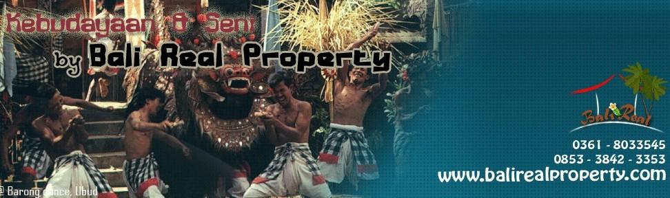 Tanah di Ubud dijual murah Tanah dijual murah di Ubud peluang investasi properti di tanah Bali