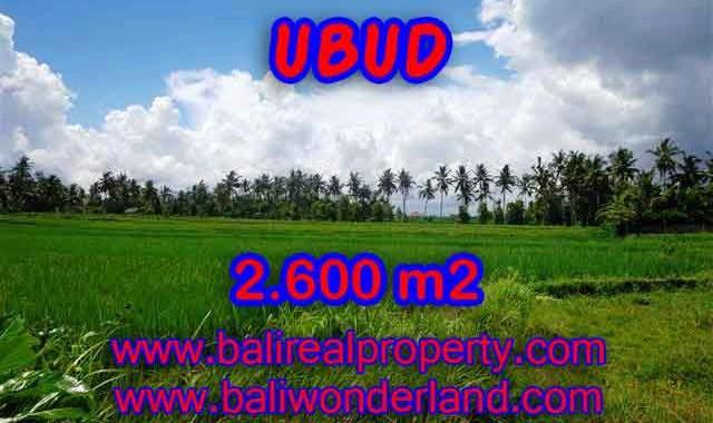 INVESTASI PROPERTI DI BALI - TANAH DI UBUD BALI DIJUAL CUMA RP 1.950.000 / M2