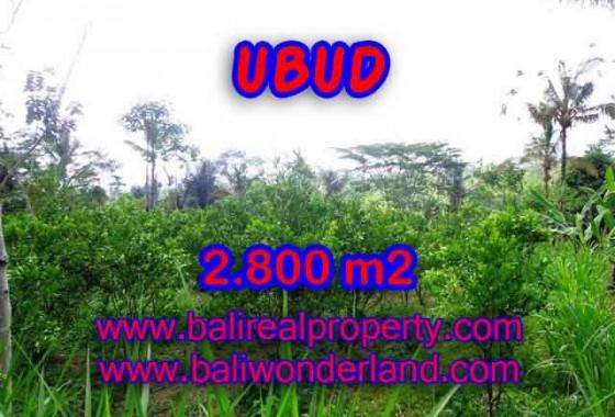 Jual Tanah murah di UBUD TJUB375 - Kesempatan investasi property di Bali
