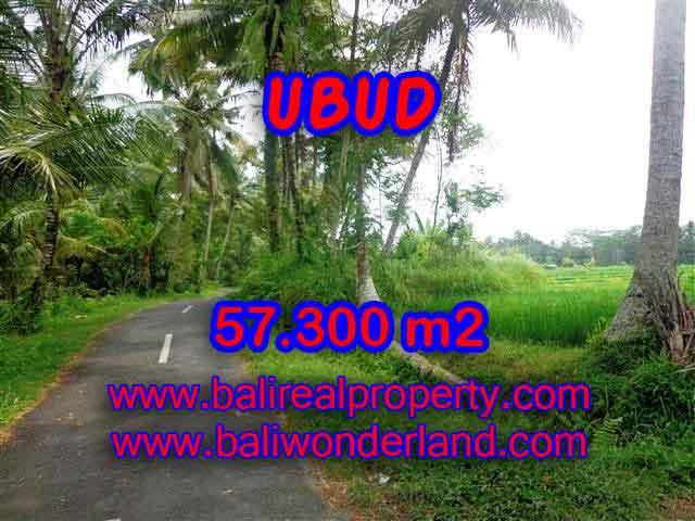 TANAH DIJUAL DI BALI, MURAH DI UBUD RP 1.850.000 / M2 - TJUB377