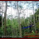 TJUB382 - JUAL TANAH DI UBUD ( Land for sale ) di Ubud Bali 02