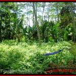 TJUB382 - Tanah dijual ( Land for sale ) di Ubud Bali 04