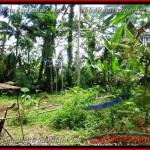 TJUB382 - Tanah dijual ( Land for sale ) di Ubud Bali 08