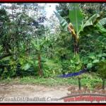 TJUB382 - Tanah dijual ( Land for sale ) di Ubud Bali 10