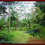 TJUB382 - Tanah dijual ( Land for sale ) di Ubud Bali 11