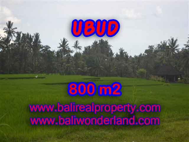 DIJUAL TANAH MURAH DI UBUD BALI TJUB396 - INVESTASI PROPERTY DI BALI