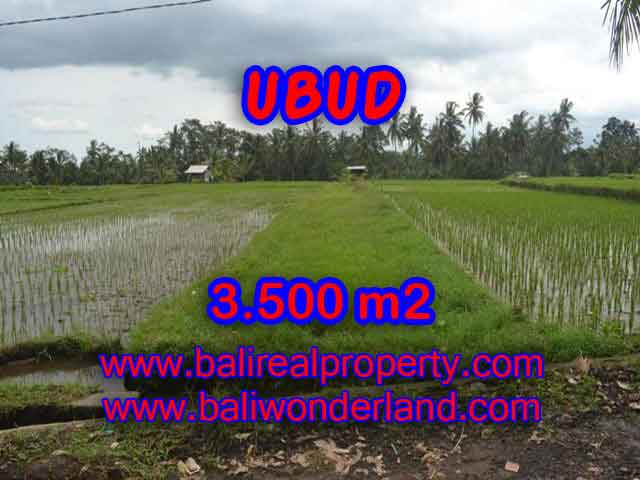 Tanah di UBUD Bali Dijual murah TJUB395 - investasi property di Bali