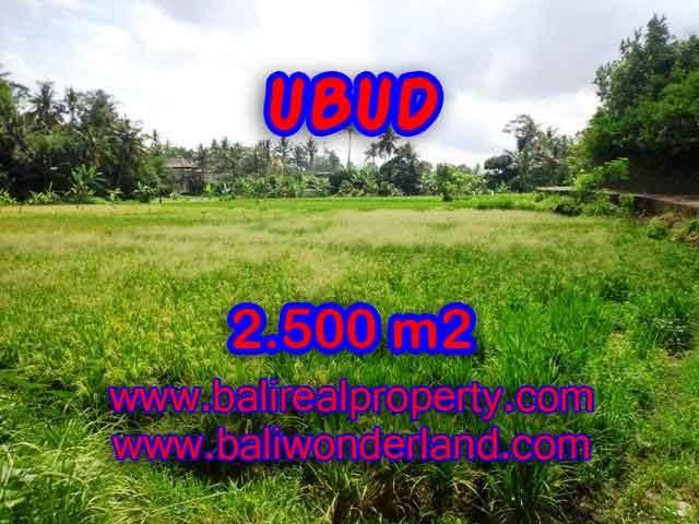 TANAH DI BALI, MURAH DIJUAL DI UBUD TJUB418