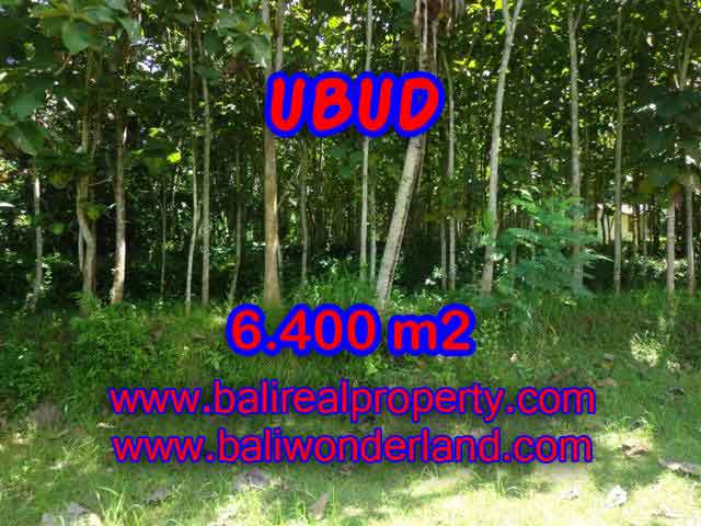 JUAL TANAH DI UBUD BALI MURAH RP 1.450.000 / M2 - TJUB401