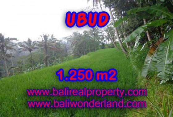 Jual Tanah murah di UBUD TJUB405 - Kesempatan investasi property di Bali