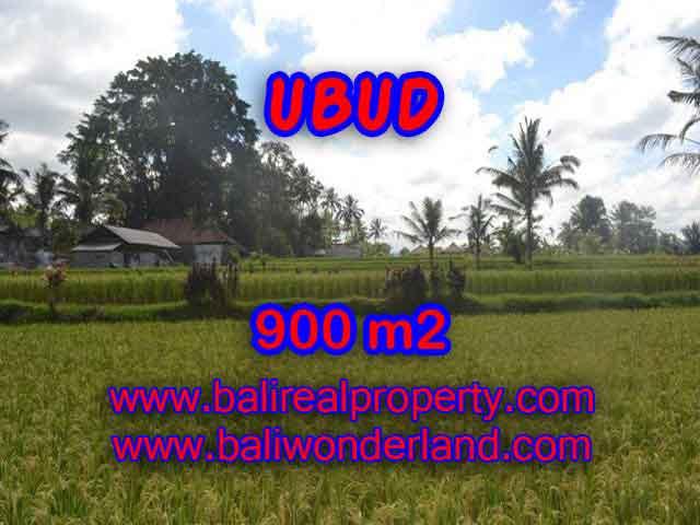 INVESTASI PROPERTI DI BALI - TANAH DI BALI, MURAH DI UBUD DIJUAL RP 1.350.000 / M2 - TJUB412