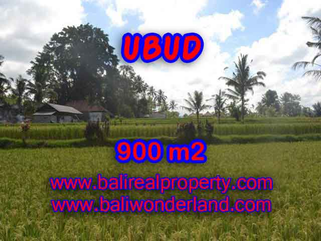 JUAL MURAH TANAH DI UBUD BALI TJUB412
