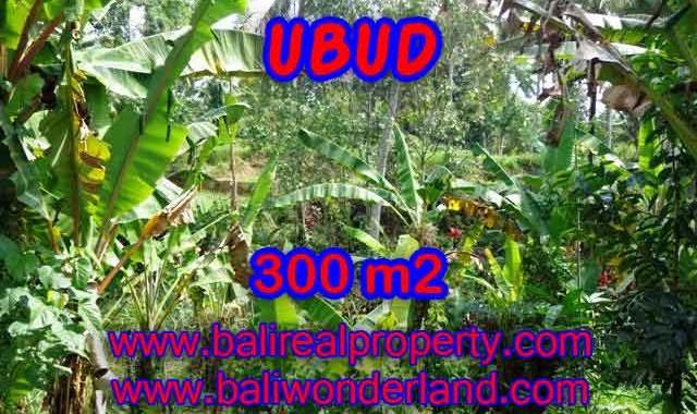 DIJUAL TANAH DI UBUD BALI TJUB415 - PELUANG INVESTASI PROPERTY DI BALI