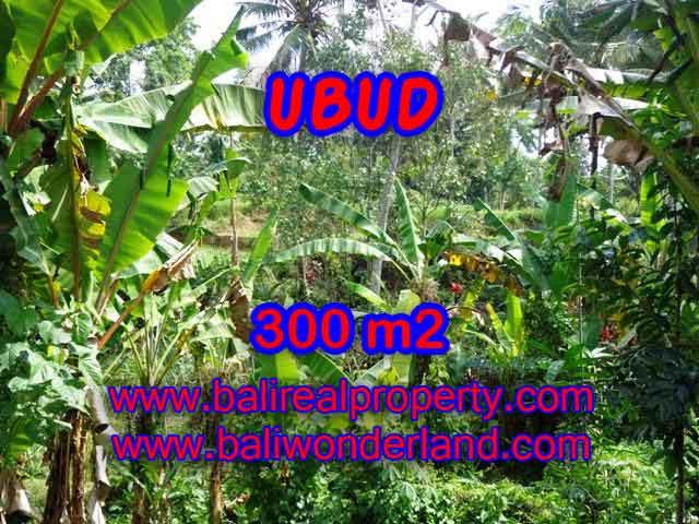 Kesempatan Investasi Properti di Bali - Jual Tanah murah di UBUD TJUB415