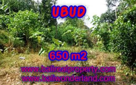 TANAH DIJUAL DI BALI, MURAH DI UBUD RP 3.950.000 / M2 - TJUB417 - INVESTASI PROPERTY DI BALI