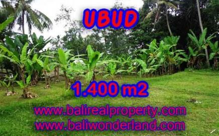 DIJUAL TANAH DI BALI, MURAH DI UBUD RP 1.000.000 / M2 - TJUB419