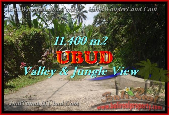 tanah murah di bali,tanah dijual di UBUD,jual tanah di UBUD,tanah di Bali dijual,tanah di UBUD Bali dijual,tanah di UBUD dijual,tanah murah di UBUD Bali,investasi properti di Bali