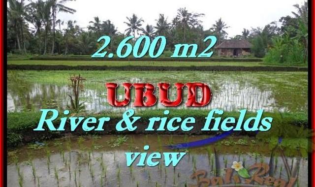 Murah ! Tanah di UBUD Bali Dijual TJUB421