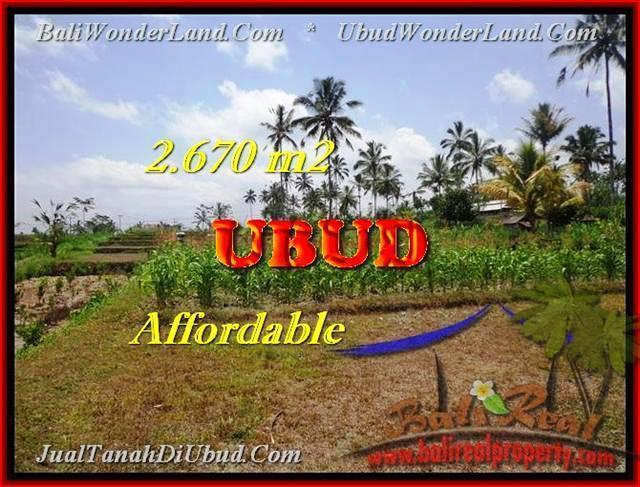 TANAH MURAH di UBUD BALI 2670 m2 View kebun dan sungai kecil
