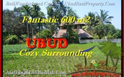 TANAH MURAH di UBUD Untuk INVESTASI TJUB452