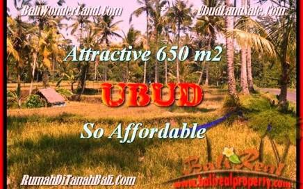 JUAL MURAH TANAH di UBUD 6,5 Are View Sawah link Villa