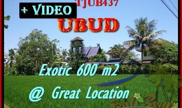 TANAH di UBUD BALI DIJUAL 6 Are View sawah link villa