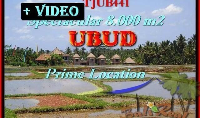 INVESTASI PROPERTY, JUAL MURAH TANAH di UBUD BALI TJUB441