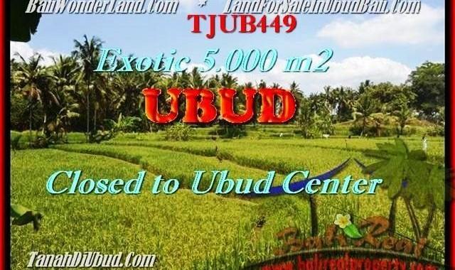 JUAL MURAH TANAH di UBUD BALI 5.000 m2 View sawah dan sungai link villa