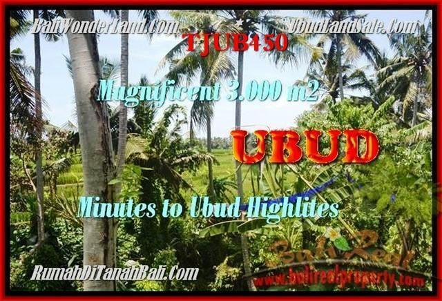 TANAH MURAH di UBUD DIJUAL 3.000 m2 di Sentral Ubud
