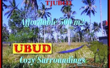 TANAH MURAH di UBUD 5 Are di Sentral Ubud